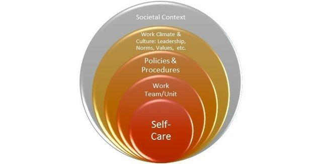 Organizational Wellness