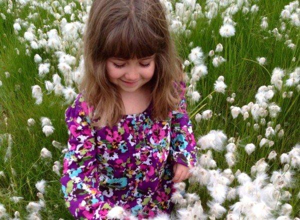 Cotton in Bethel Alaska