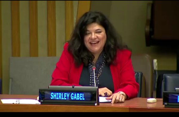 Social Work Day at the United Nations 2017