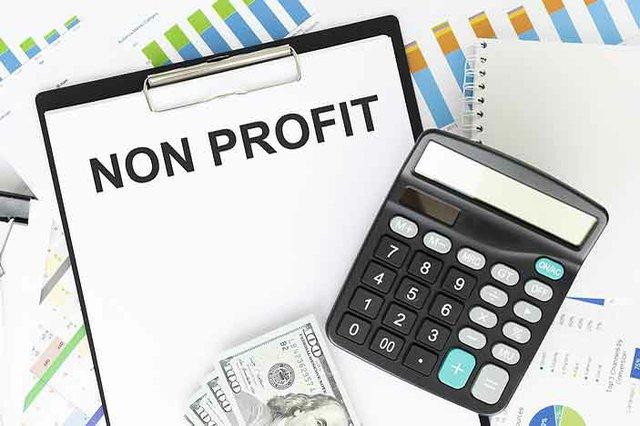 Nonprofit Business Model