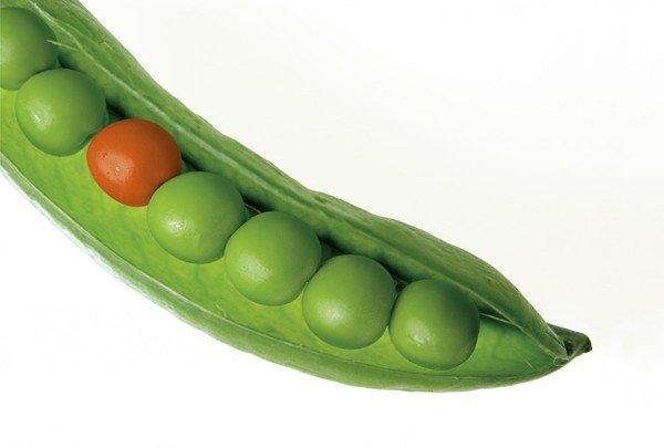 Peas in Pod